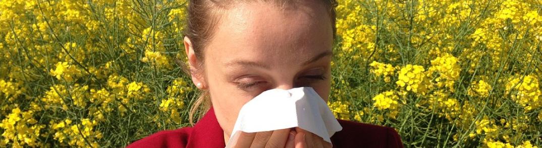Allergies saisonnières : quels traitements naturels ?