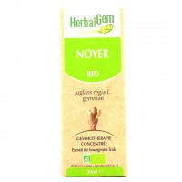 HerbalGem NOYER 30ml