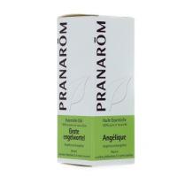 Pranarom huile essentielle Angélique 5 ml