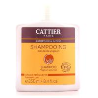 Shampooing Bio