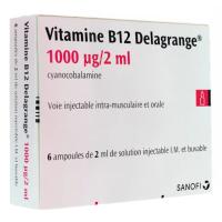 Vitamine B12 Delagrange 1000µg / 2ml 6 ampoules