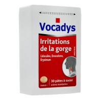 Vocadys Pâtes à Sucer Irritations de la Gorge