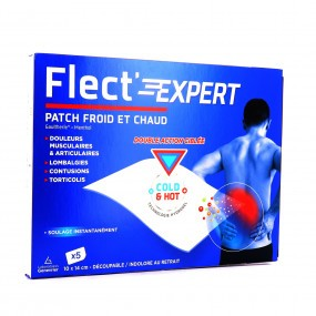 Flect'Expert 5 Patch gaulthérie