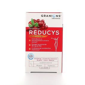 Granions Réducys Confort urinaire