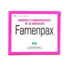 Lehning Famenpax nausées vomissements de la grossesse 40 comprimés