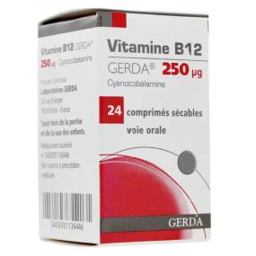 Vitamine B12 gerda 250µg 24 comprimés