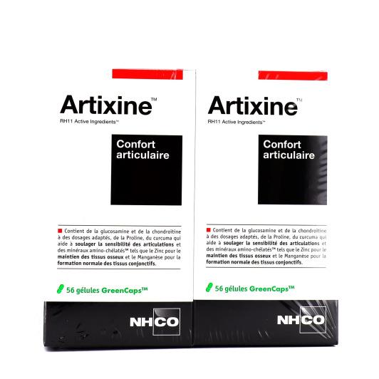 Artixine 56 gélules NHCO